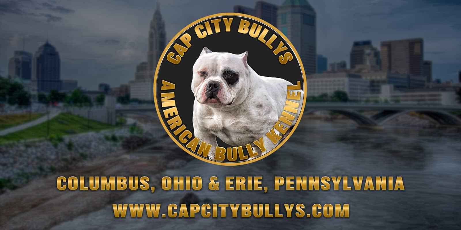 CapCity Bullys